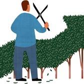 Mick Wiggins - Business, CFO, Growth, Investments, Investor, Money Management, Money Tree, Planning, Profit, Trimming